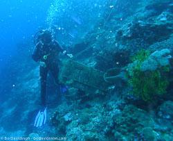 BD-060411-Moalboal--Homo-sapiens.-Linnaeus.-1758-[Diver].jpg